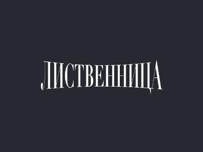 ЛесОптТорг - лиственница в Уфе - лиственницауфа.рф